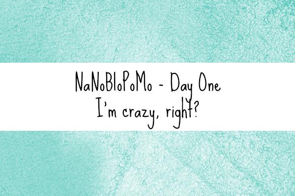nanoblopomo1