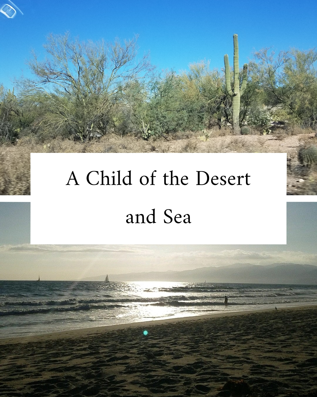 """two images stacked - on the top is a picture of the desert. A saguaro cactus with rough brush around it. On the bottom is a beach at sunset, a boat silhouetted in the distance, the sun shining off the water, in between is a text box that reads """"A Child of the Desert and Sea"""""""